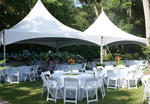 Tent and Table Rentals from Pink Elephant
